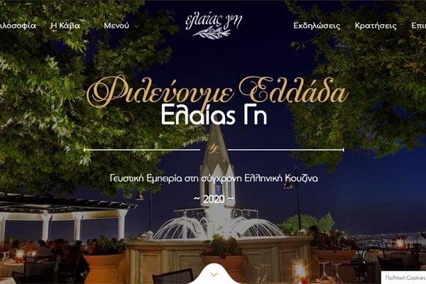 eleas-gi-website-screenshot-1