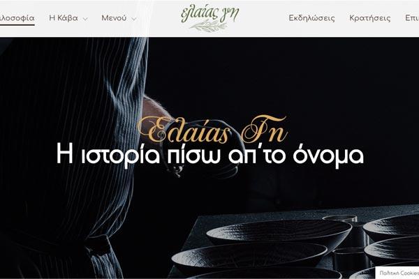 eleas-gi-website-screenshot-2